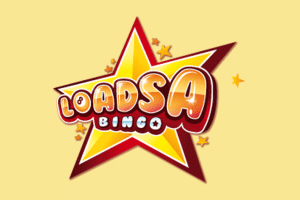 Loadsa Bingo - 1004 Free Bngo Tickets + 20 Free Spins