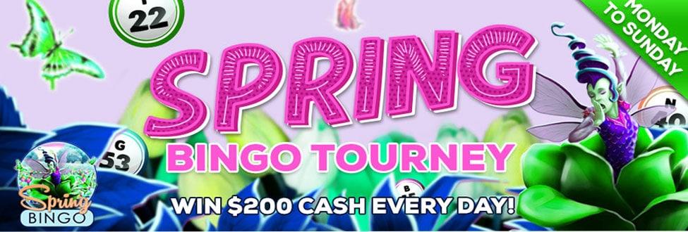 Spring Bingo Tourney Be a winner every day at Bingo Fest
